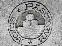 Спасение банков Италии