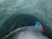 В теплых пещерах  Антарктиды существует жизнь