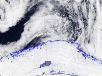 В Антарктиде образовалась огромная полынья