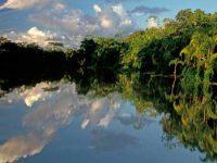 В джунглях Бразилии нашли американскую семью