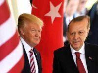 Трамп отказался поставлять оружие курдам