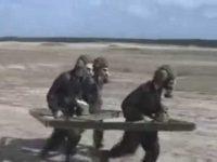 На деревянных танках прямо в НАТО