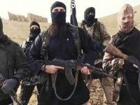 """США собираются отпустить боевиков """"ИГИЛ"""""""